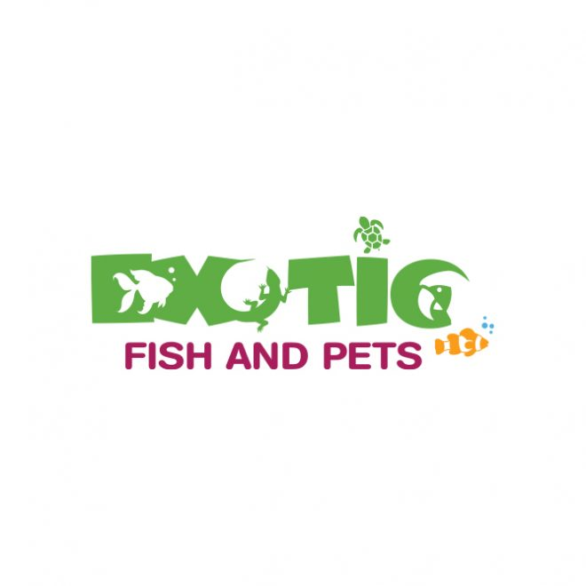 Logo For Pet Store | Exotic Fish And Pets - Portfolio Color